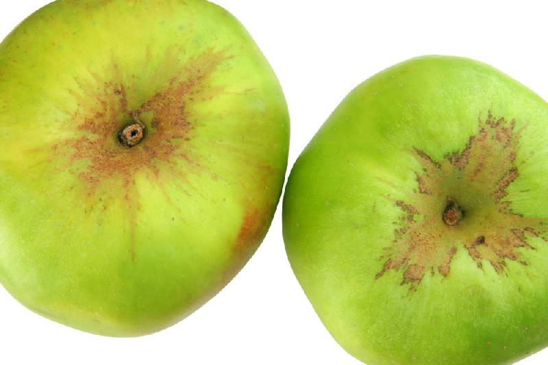 Apples - Bramley