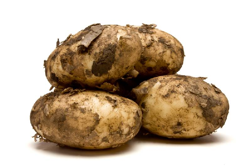Potatoes - New